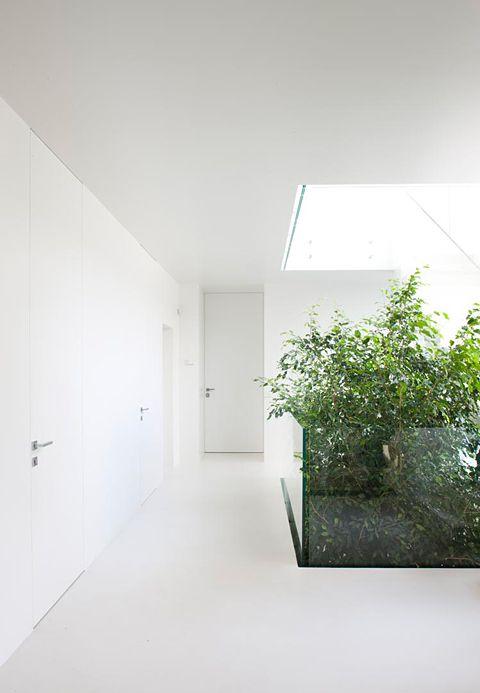 Canvas Planner ✓ inside/outside