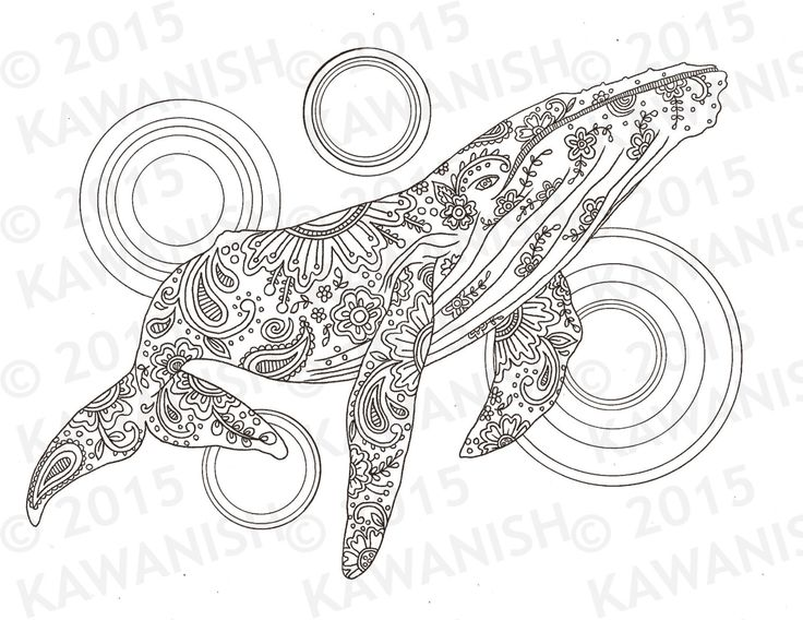 Whale adult coloring page gift