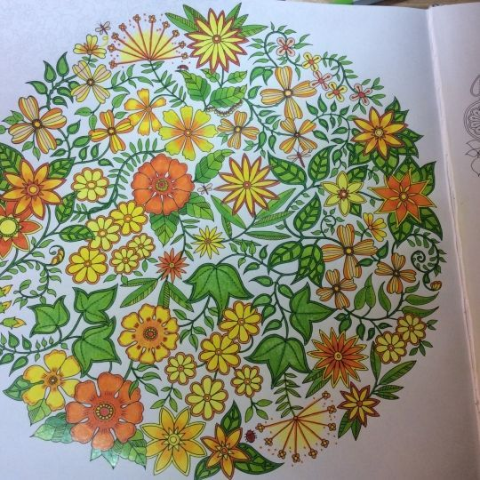Secret Garden Colouring Book Flowers