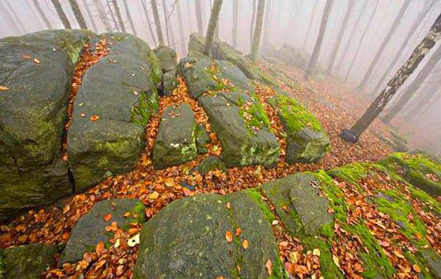 Góry Świętokrzyskie - Bukowa Góra - Polska