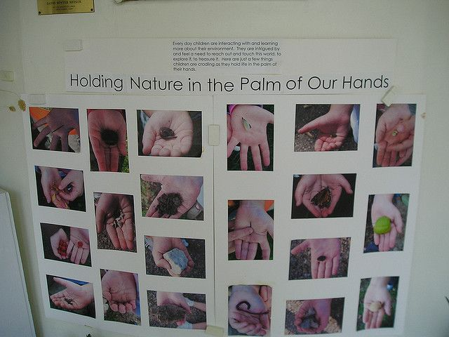 holding nature in the palm of our hands!  I love this idea and the documentation with it.