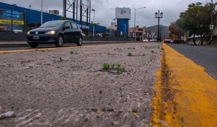 El césped sintético en la Entre Ríos quedó solo en una anécdota: Ayer el municipio quito la alfombra colocada, hace una semana, entre Junín…