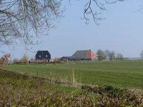 Foto: Wergea Wartensterdyk