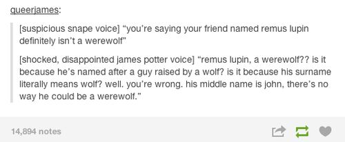Oh James Potter. Remus can't possibly be a werewolf since his middle name is John.
