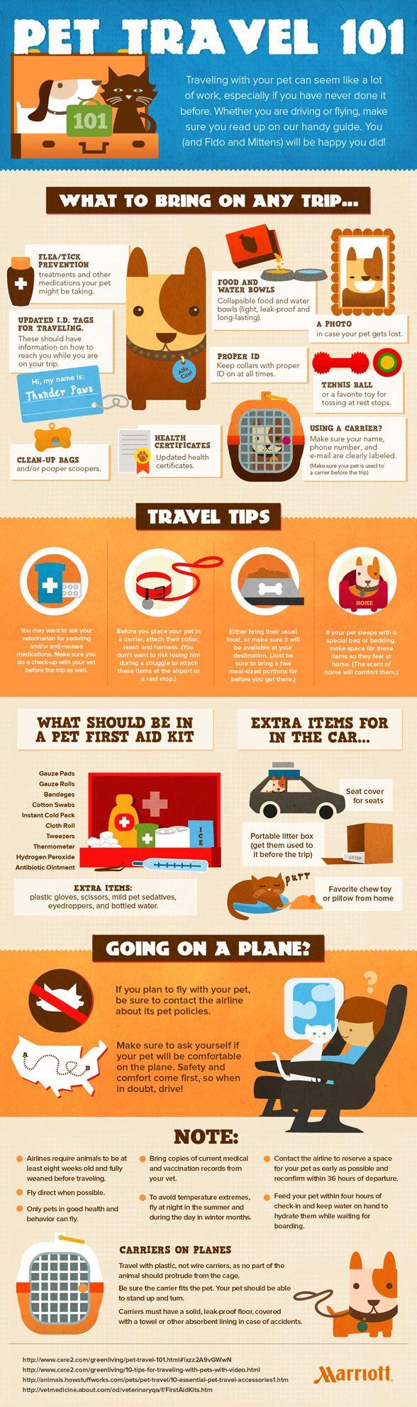 Preparing for Pet Travel | DogTipper.com
