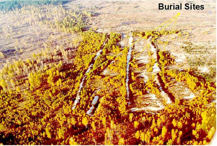 Burial sites for radioactive biomass in the Red Forest, Chernobyl.   http://www.nsrl.ttu.edu/chornobyl/rf3.htm