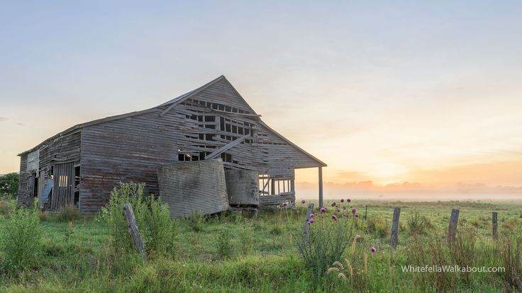 Old Barn watching a Misty Sunrise, Mary River Valley Region, QLD