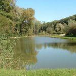 Pêche en étang et lac aux alentours des Herbiers