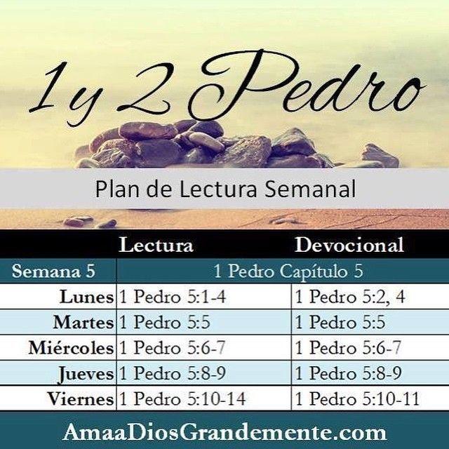 SEMANA 5 ~ Plan de Lectura #AmaaDiosGrandemente #plandelectura #1y2Pedro #MujeresenlaBiblia #EstudioBíblico