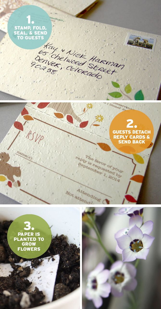 wildflower wedding invitation templates%0A Seal and Send Wedding Invitations from Botanical PaperWorks are as easy as  and they give the gift of wildflowers to your family and friends