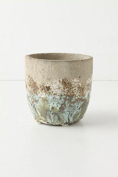 Umbellifers Herb Pot, Small Cup Concrete Pots, Painting Concrete
