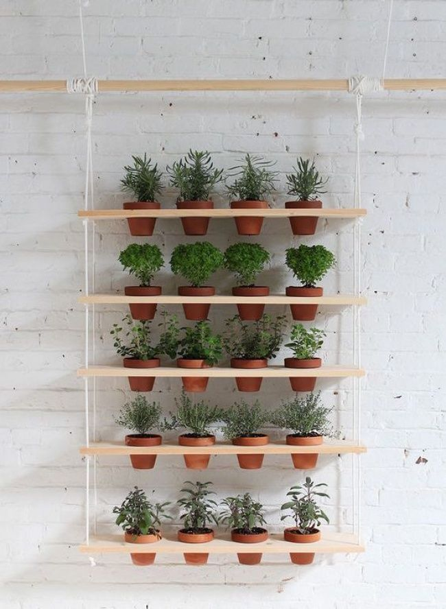 12awesome ideas for creating avertical garden inyour house