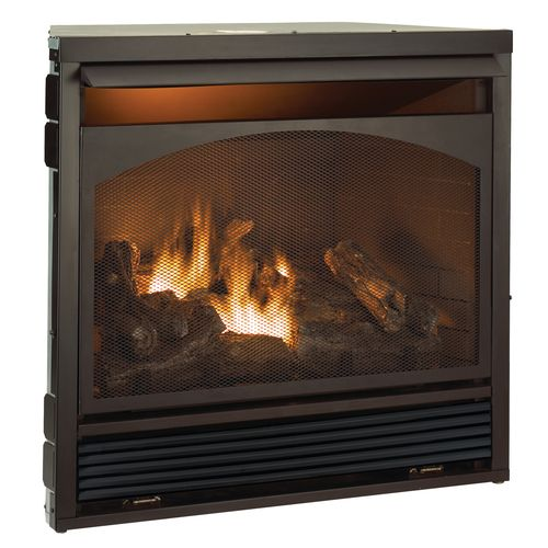 Duluth Forge Dual Fuel Ventless Fireplace Insert - 32,000 BTU, Remote Control - Factory Buys Direct