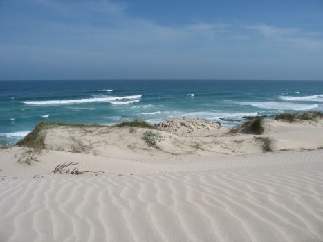 Walk on the exquisite milk-white sand dunes in the De Hoop nature Reserve, Western Cape, South Africa