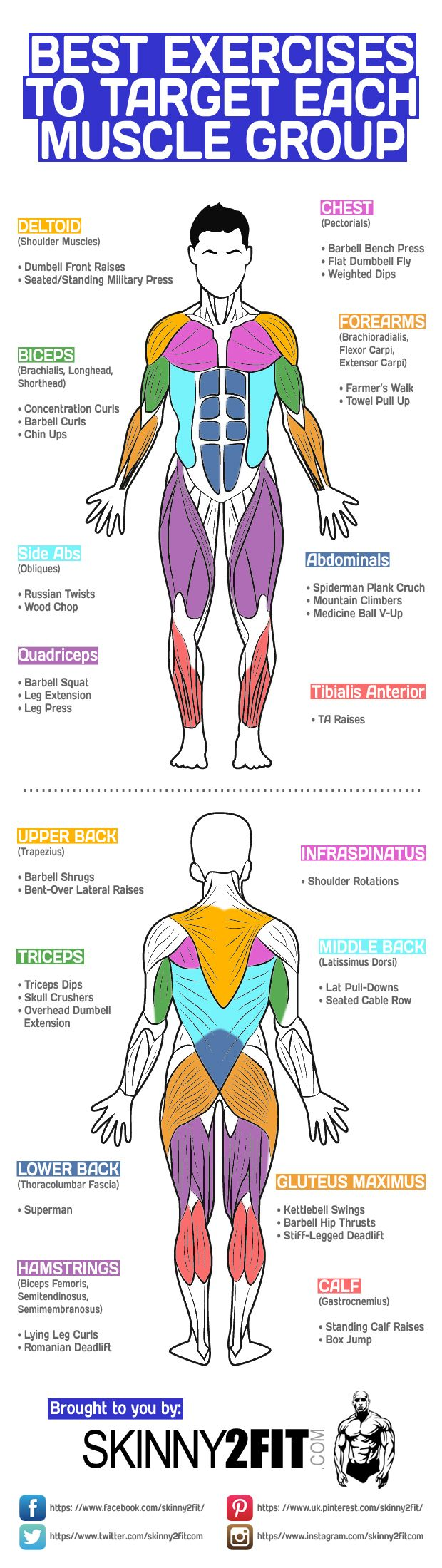 Of course compound exercises like the bench press, squat and deadlift are good more working multiple muscle groups, but if you have time you could also incorporate other exercises to isolate them even further.  The following graphic shows some of the best exercises to target each muscle group. Perhaps incorporate a few of these into your next workout and see the rewards. #bodybuilding #bodybuilder #fitness #health #exercise
