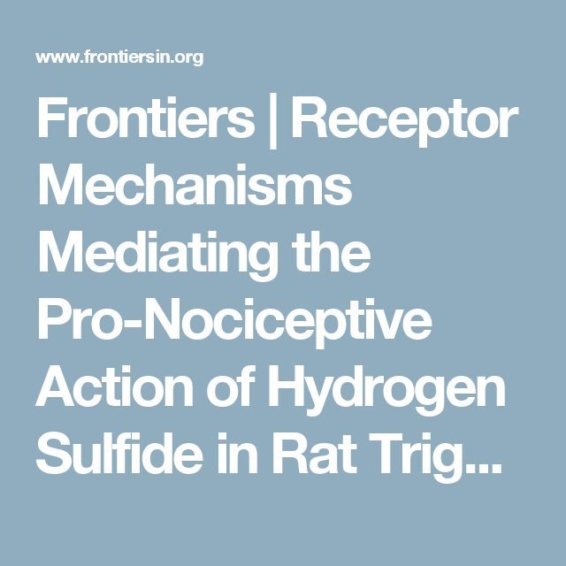 Frontiers | Receptor Mechanisms Mediating the Pro-Nociceptive Action of Hydrogen Sulfide in Rat Trigeminal Neurons and Meningeal Afferents | Frontiers in Cellular Neuroscience