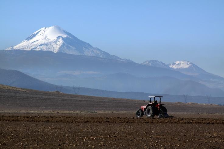 Teniendo de fondo el Pico de Orizaba, la montaña mas alta de México y cerca de la ciudad de Perote, Veracruz, un campesino en su tractor prepara la tierra para la siembra.