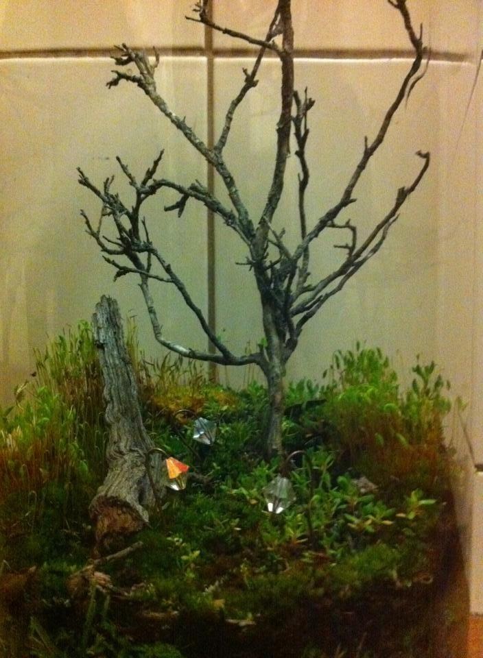 Enchanted fairy garden vase @Zamfyre Designs