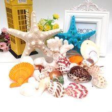 Paket posta doğal kabuklu kabukları, 400g + 2 deniz kabukları yıldız akdeniz style mobilya makaleler(China (Mainland))