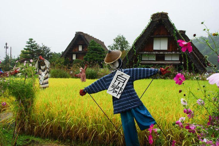 épouvantails dans les rizières de shirakawa-go