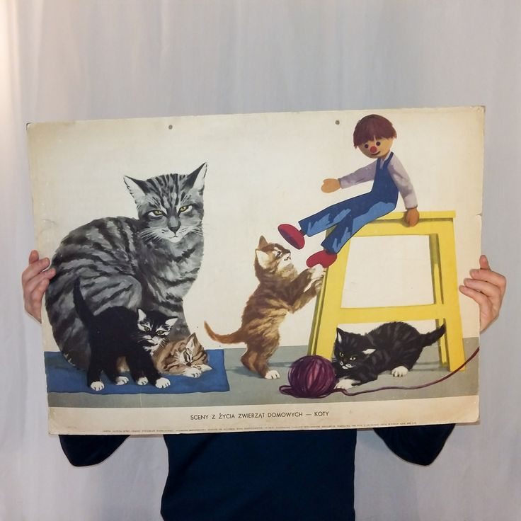 Z ilustracjami Stanisława Rozwadowskiego.  #vintage #vintagefinds #vintageshop #forsale #design #midcentury #midcenturymodern #polish #illustration #kids