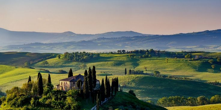 ITALY | Olio Cilli | The Italian Olive Oil