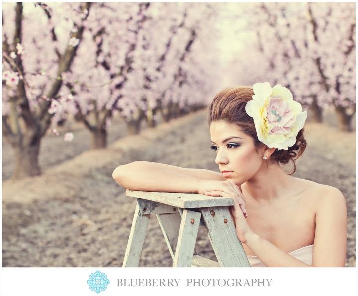 Photoshoot cherry blossoms
