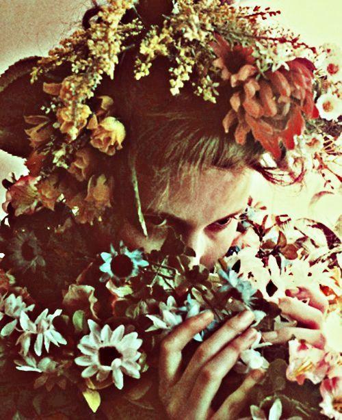 Bohemian Floral Shades: