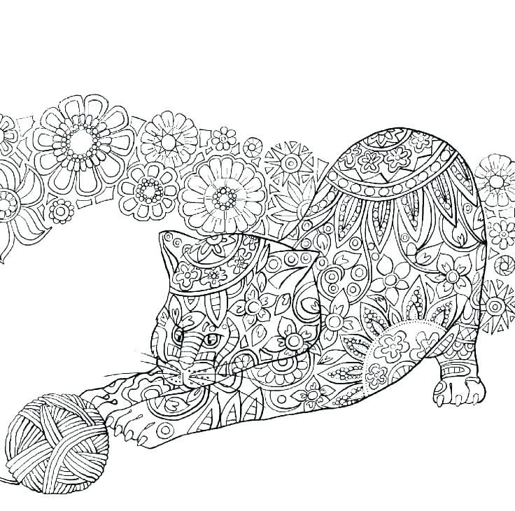 wild cat coloring pages c2528 big cats coloring pages wild ...