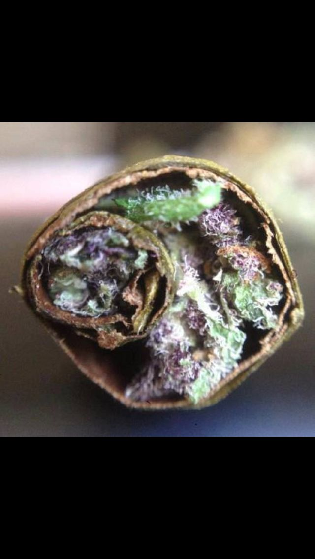 I heard you like blunts. So I put a blunt in your blunt so you could blunt while you blunt.