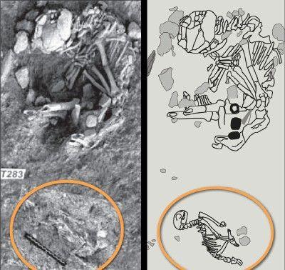 Jean-Denis Vigne, do Museu Nacional de História Natural de Paris, e a sua equipa, desenterraram um túmulo onde estavam sepultados, lado a lado, um ser humano de sexo desconhecido e um gato de cerca de 8 meses. Ambos os corpos se encontravam sepultados na mesma direção (oeste). Mais surpreendente foi a datação desses restos mortais: 9.500 anos, ainda mais antigo do que a descoberta de 1983.