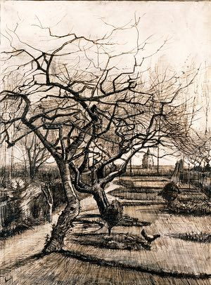 WINTER: The parsonage garden at Nuenen in winter (mid-March 1884) - Pen and brown ink with white heightening. The six drawings of the garden and surrounds of his father's parsonage that Van Gogh made in the winter of 1884 are quite large, highly finished, richly atmospheric. The old gnarly trees have a tremendous sense of life and energy, despite being leafless around mid-March.  Photograph: Rázsó András/Museum of Fine Arts, Budapest
