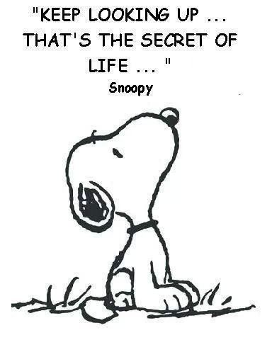 Gallery For > Snoopy Quotes Tumblr