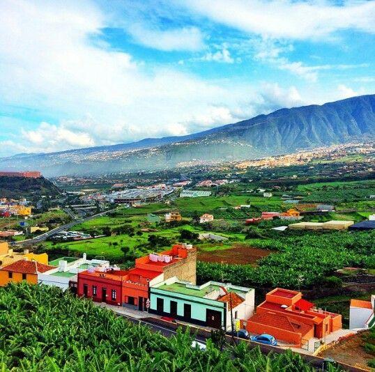 Los Realejos, Tenerife, Canary Islands, Spain