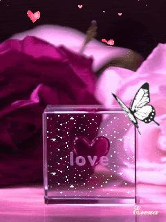 Animated, Pink, Butterfly, Butterflies, Love, Hearts, Heart, Glitter, Cute, Sweet, Lovely, Pretty, Nice, Beautiful, Cute_Stuff