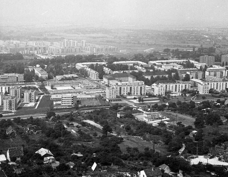 Tatbánya-Újváros látképe a Turul emlékműtől, háttérben Dózsakert, még messzebb Kertváros. 1972. – Fortepan