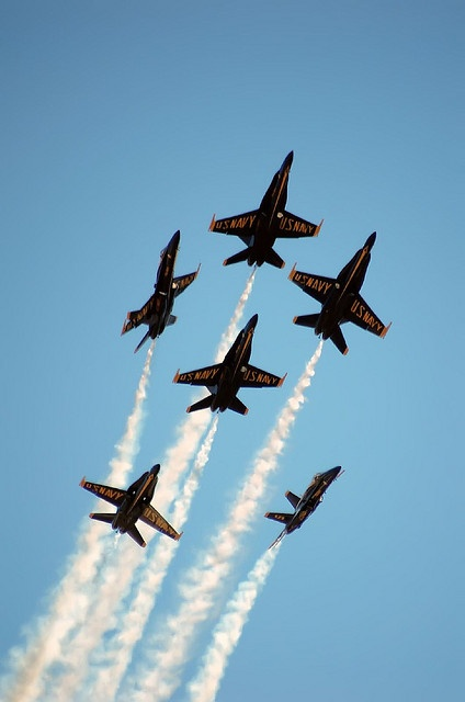 The blue angels~ Love them. Have seen them several times.  Awesome!!!