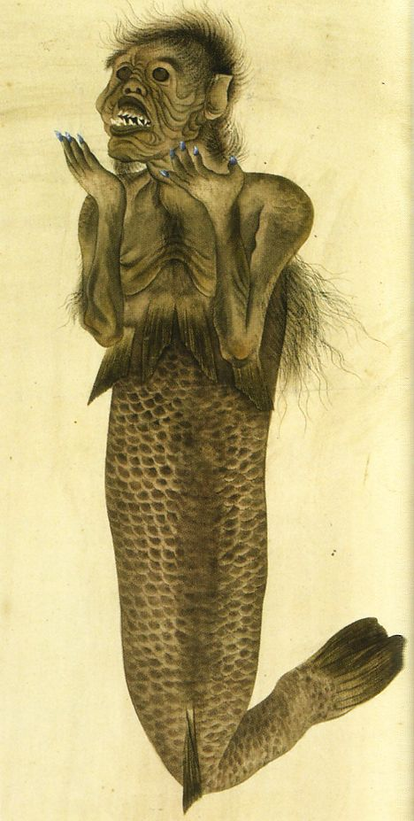 Mermaid illustration obtained by Blomhoff, late Edo period (artist unknown)    This mermaid illustration from the National Museum of Ethnology (Leiden, Netherlands) was obtained by Dutch trader Jan Cock Blomhoff, who served as director of the Dejima trading post in Nagasaki from 1817 to 1824. The drawing appears to show a different mermaid than Blomhoff's famous mummified specimen, which is also owned by the museum.