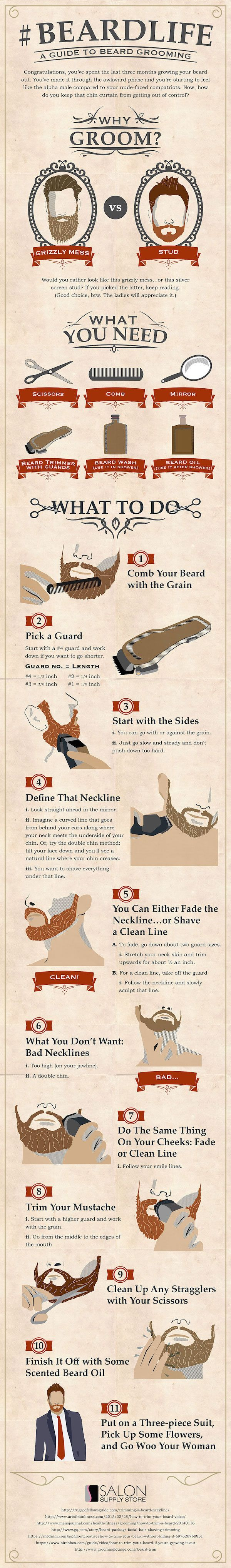 Infographic: A Handy Men's Guide To Keeping Your Beard Well-Groomed - DesignTAXI.com