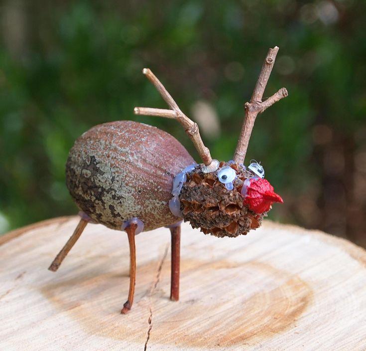 Nature craft Rudolf, made from gumnut, sheoak pod, gumnut cap and sticks - more ideas in my book 'Nature Crafts for Aussie Kids',