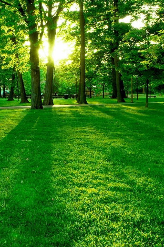 26 Best Images About Clean And Healthy Environment On