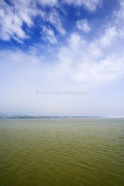 Fog lifts over the Kaipara Harbour, Northland | © Elyse Childs Photography