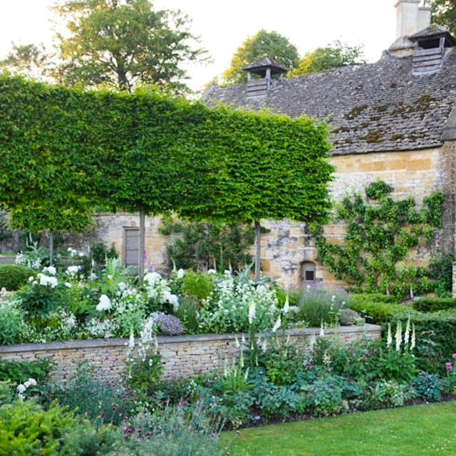 I featured a different part of this garden in an earlier post. It is the famous garden of Temple Guiting, a Cotswold garden designed by the award winning talented Jinny Blom. I like everything about this image from the drystone walling to the palette and the plants. Charming!!