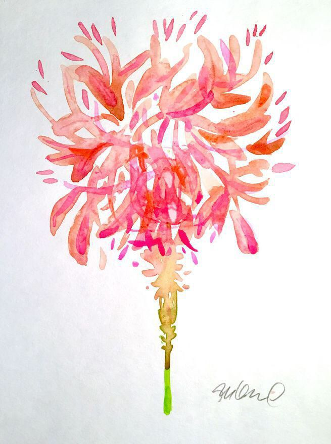 Original Feather Duster Watercolor Painting on Chairish.com