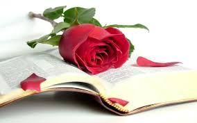 Resultado de imagem para flores con mensajes cristianos