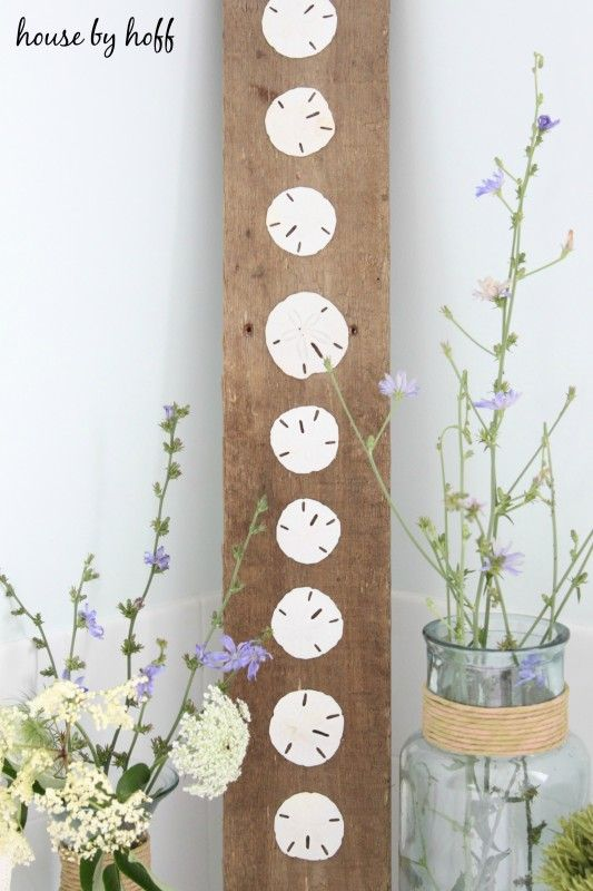 Love this! Sanddollars glued to old board. Beachy Decor Ideas | somuchbetterwithage.com