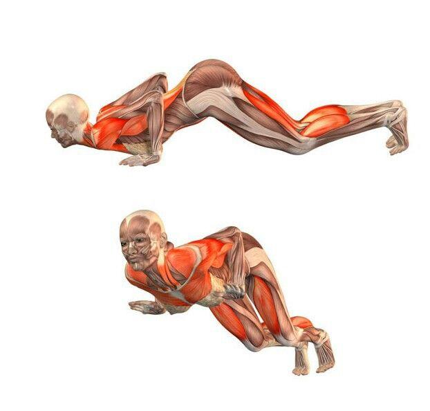 надеяться, что йога с картинками какие мышцы дробны тянуть как