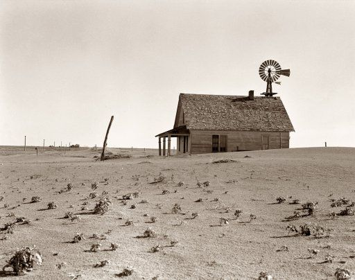 Dust Bowl Farm, 1938. Such a depressing and yet thought provoking sight. We're seeing here devastation due to overfarming; we're seeing here an ecological disaster directly connected to human interactions with the land.