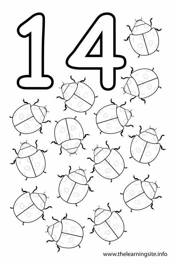 Number 12 Coloring Page Luxury 16 Best Of Number 14