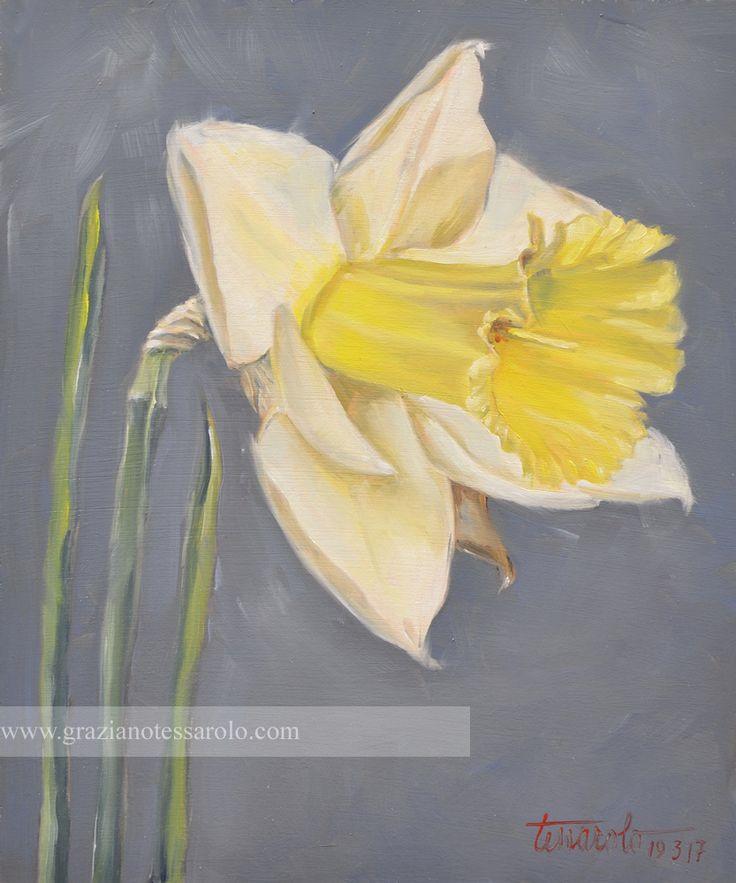 Narciso, 19.03.17